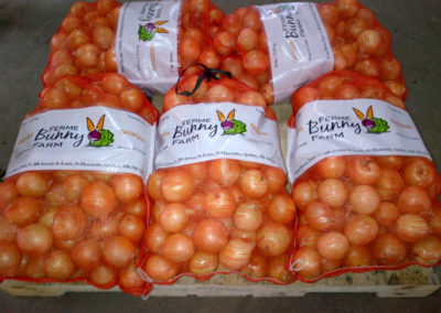 large bags of onions
